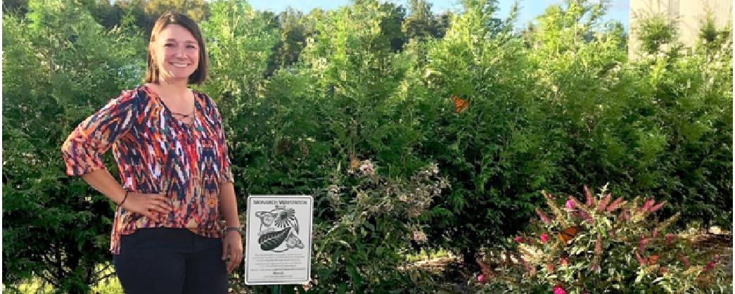 Process Technology garden designated as monarch waystation habitat